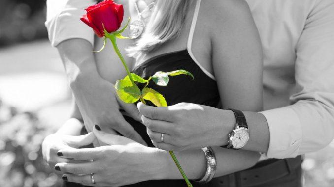 ruža-par-dan-zaljubljenih