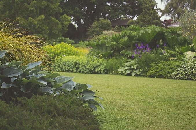 Saveti i ideje za uređenje dvorišta